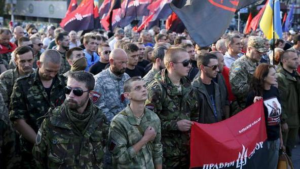 """Kampf den inneren Okkupanten"" - Rechter Sektor sammelt Unterschriften für Misstrauensvotum gegen Regierung in Kiew"