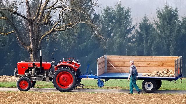 """Russland-Sanktionen und Dürre - Lage deutscher Landwirte """"mehr als angespannt"""""""