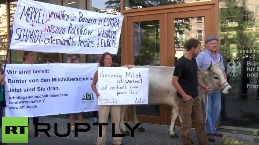 """Landwirte protestieren in Berlin – """"Merkel und Schmidt vernichten Bauern in Europa"""""""