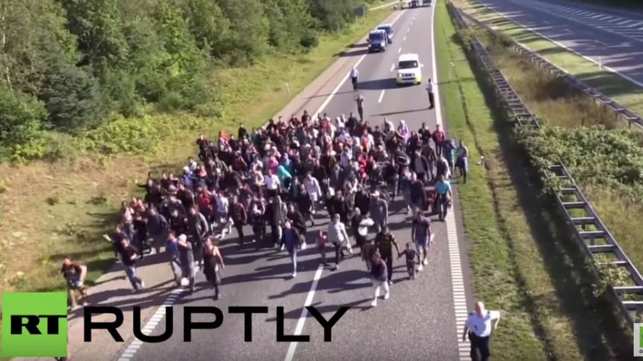Flüchtlingschaos an der dänischen Grenze: Zu Fuß über die Autobahn Richtung Schweden