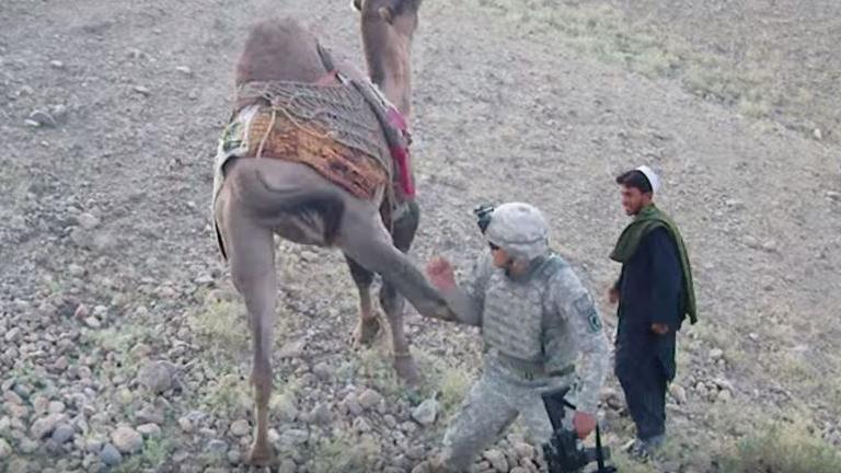 US-Soldat in Afghanistan nähert sich Kamel - Doch dies zeigt sich von seiner anti-imperialistischen Seite