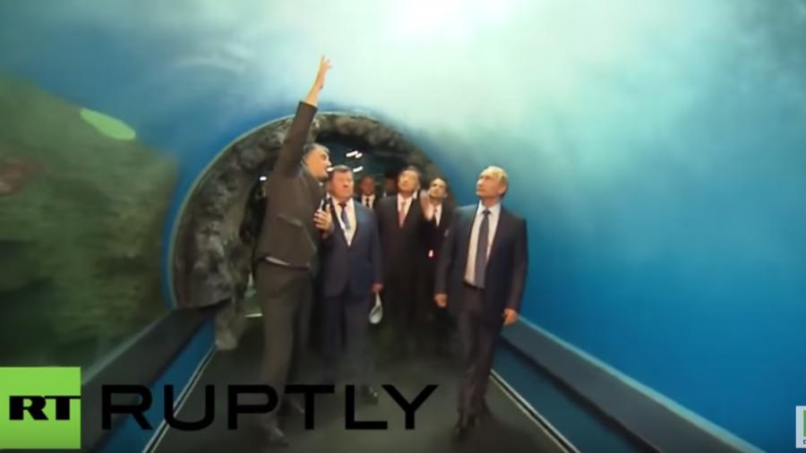 Russland: Putin besichtigt neues Ozeanarium in Wladiwostok