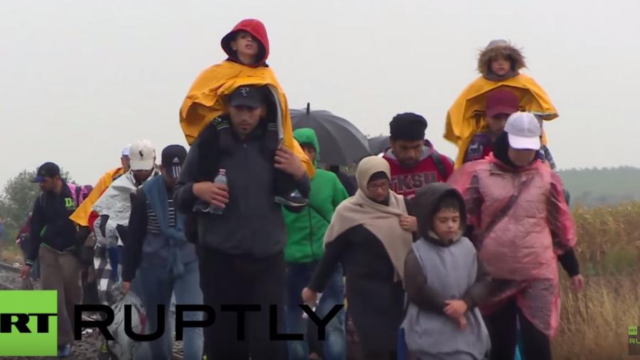 Live: Flüchtlinge im ungarischen Rözske