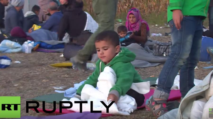 Live von der Flüchtlingslage in Röszke an der ungarischen Grenze