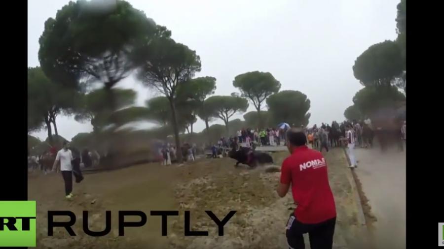 Spanien - Grausame Tradition: Stier wird zu Tode gequält