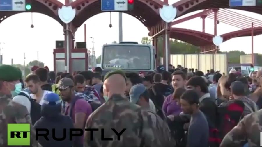 Live aus Beremend: Flüchtlinge aus Kroatien wieder zurück an Ungarns Grenze