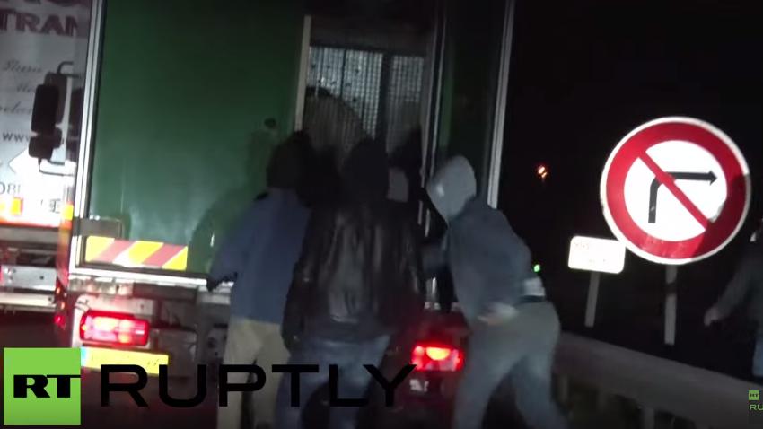 Eurotunnel: Flüchtlinge schleichen sich in LKW - Darin sitzt allerdings ein Eisbär