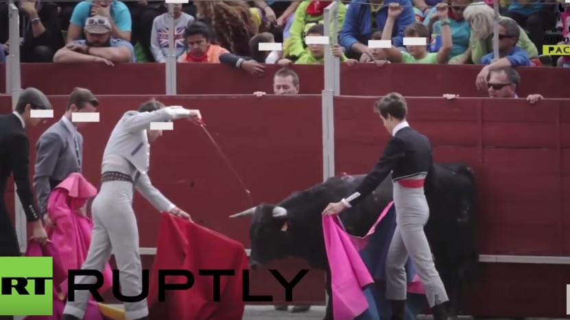 Spanien: Kulturministerium zeichnet Schule aus, die Kindern das Stiertöten beibringt
