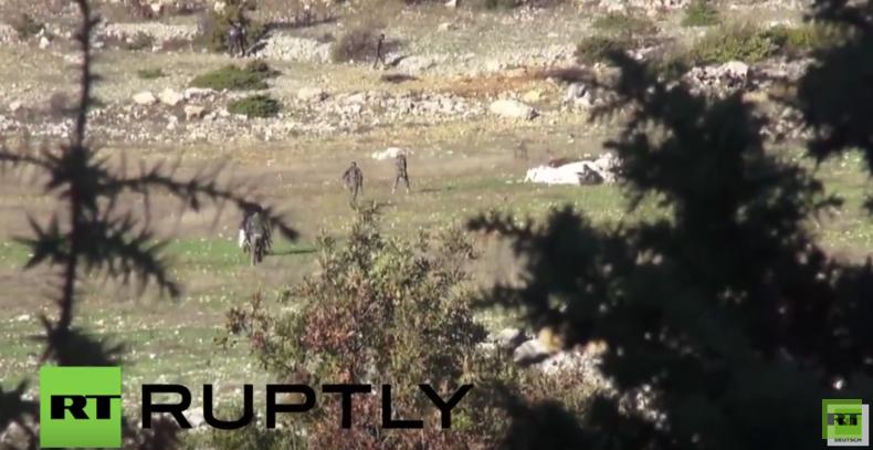 Syrisch Arabische Armee intensiviert Kämpfe gegen Turkmenen-Milizen nahe türkischer Grenze