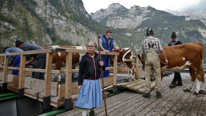 """Deutscher Bauernverband: Aufhebung der Sanktionen gegen Russland """"Gebot der Stunde"""""""