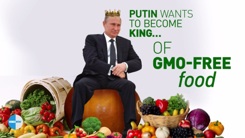 """GMO-Verbot in Russland rentiert sich: Putin will Weltmarkt mit """"sauberer Nahrung"""" versorgen"""