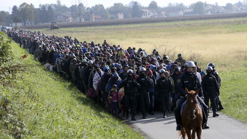 Flüchtlingstross nahe der slowenischen Ortschaft Dobova