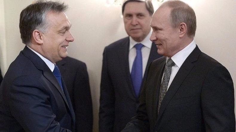 Live: Putin und Orban halten Pressekonferenz nach Treffen in Moskau (engl. Übersetzung)