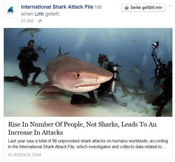 Haiangriffe: Rekordhoch im Jahr 2015 – Die meisten Angriffe erfolgten in den USA
