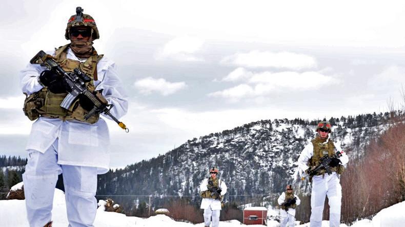 """NATO-Manöver in Norwegen: """"Übung zum Einmarsch in ein kaltes Land"""""""