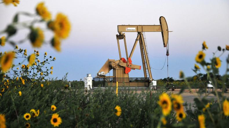 "Goldman Sachs: ""Ölpreis-Spuk"" könnte bald vorüber sein"