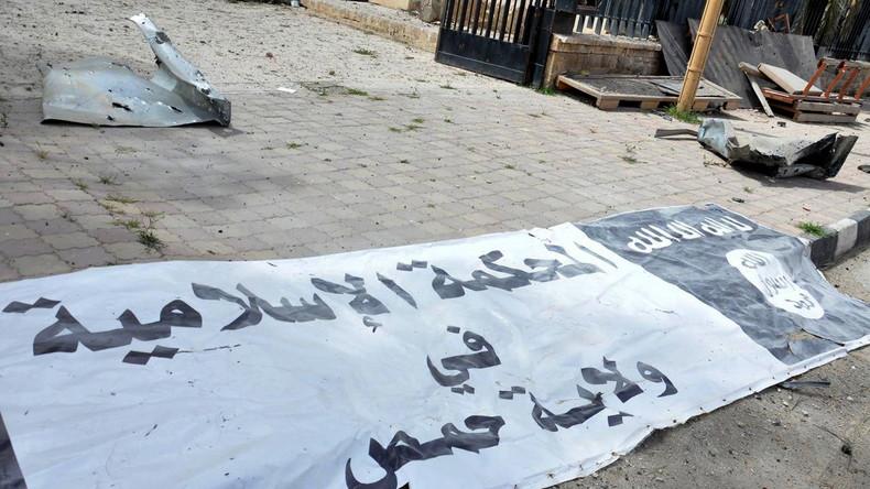 Internationale Reaktionen auf neue Beweise von RT für Ankaras Zusammenarbeit mit IS-Terroristen