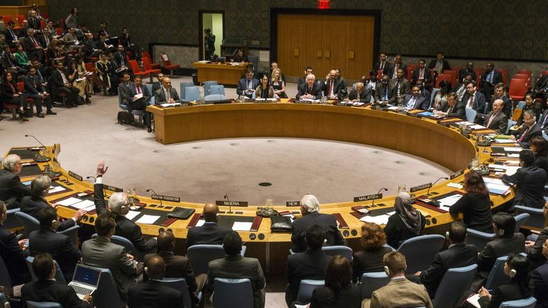 UN-Sicherheitsrat blockiert Russlands Appell zum innersyrischen Dialog und Einbeziehung der Kurden