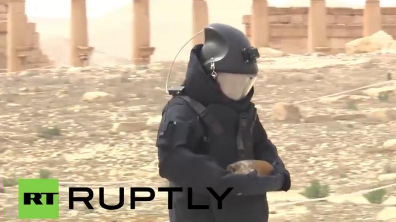 Minenentschärfungs-Kommando in den Ruinen Palmyras – Schon über 1500 Sprengsätze unschädlich gemacht
