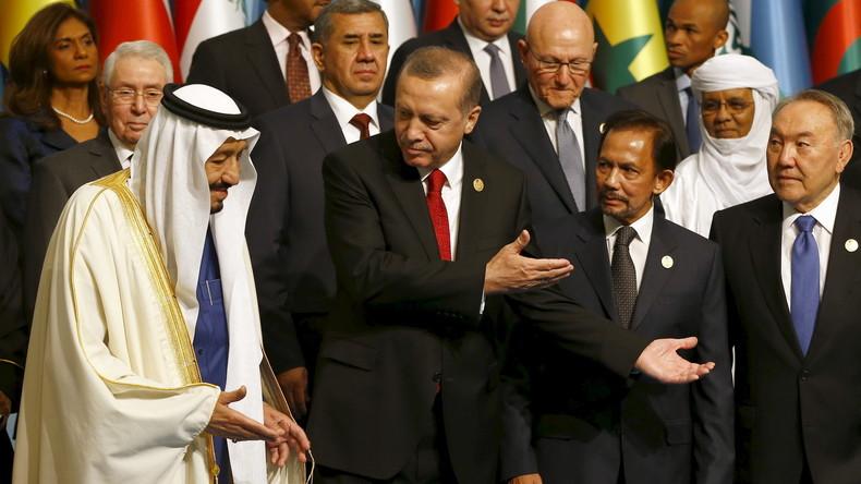 """Türkische Regierung auf dem OIC-Gipfel: """"Besetzte Territorien wie Palästina und Krim befreien"""""""
