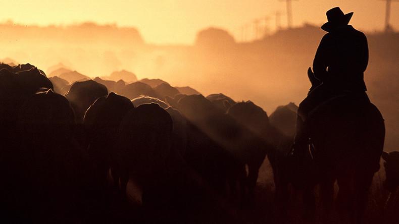Chinesische Investoren wollen 11 Millionen Hektar Land in Australien aufkaufen
