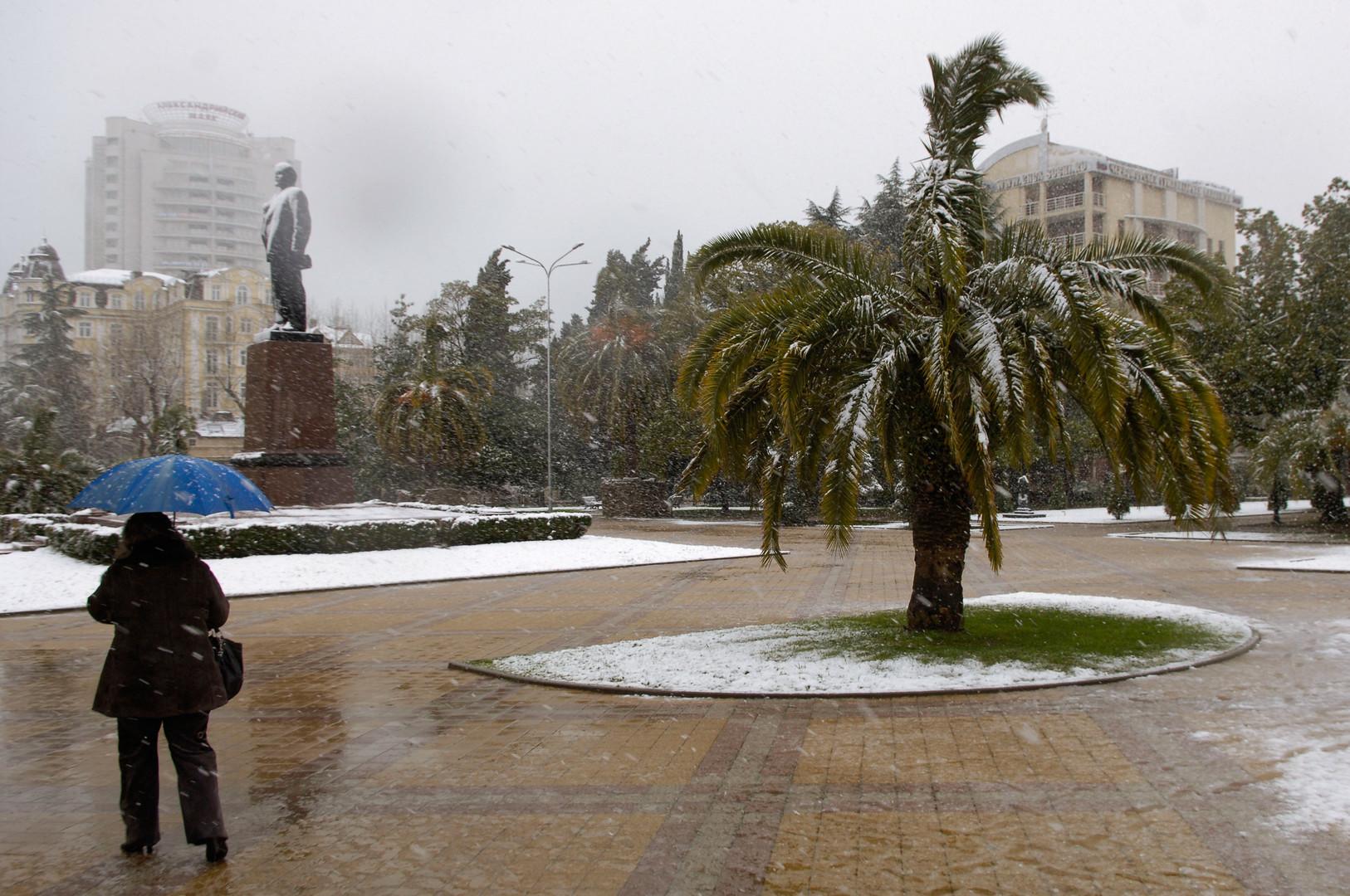 Sotschi: Palmen im Schnee