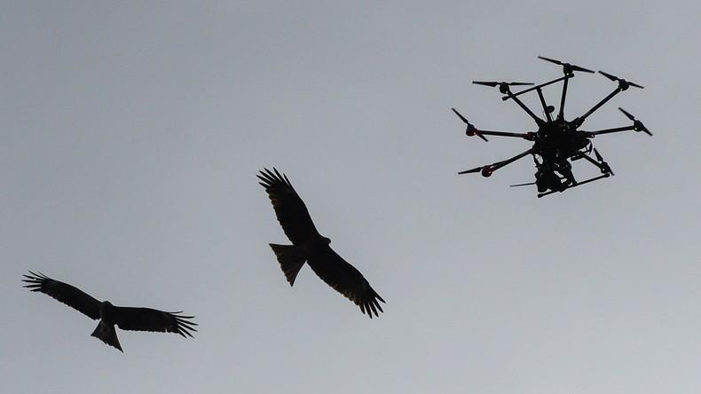 """Polens Verteidigungsminister sieht """"massenhafte Drohneninvasion"""" aus Russland"""