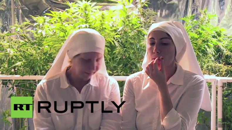 USA: Nonnen wollen Welt mit Marihuana heilen und widersetzen sich Cannabis-Handelsverbot