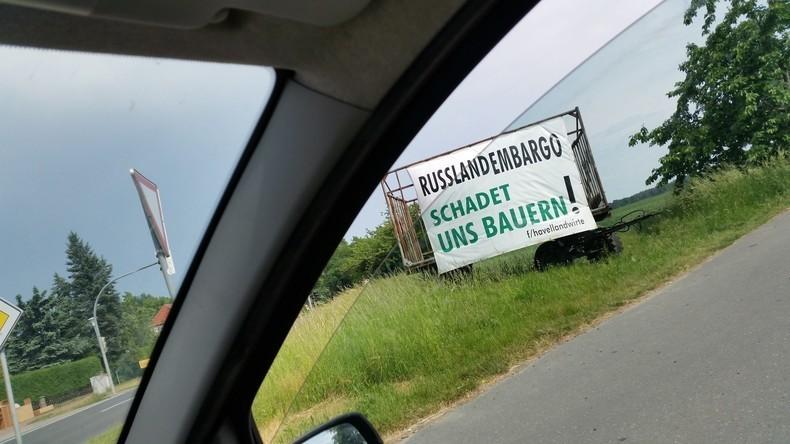 Die Folgen der Sanktionspolitik: Wie Milchbauern in Deutschland ums Überleben kämpfen