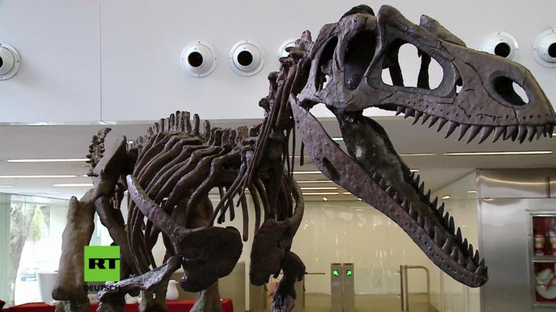 Als verschollen gegoltener Dinosaurier-Fund neuer Spezies in Argentinien enthüllt