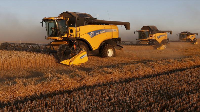 Russland verteidigt Rang als weltweit größter Weizenproduzent
