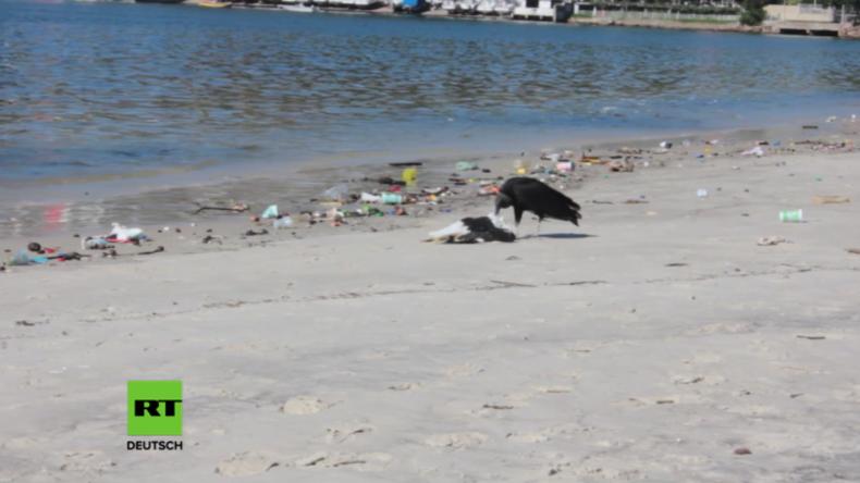 Olympia 2016: Segel-Wettbewerb wird in Müll-Bucht Guanabara ausgetragen
