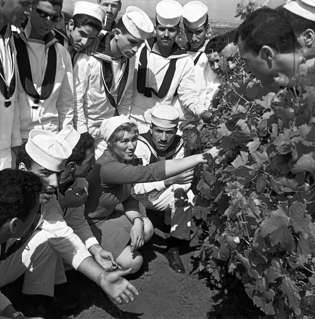 """Die Mannschaft des syrischen Zerstörers El-Fatikh zu Besuch auf der Weingut-Kolchose """"Goldener Arm""""  in Sewastopol, 1966."""