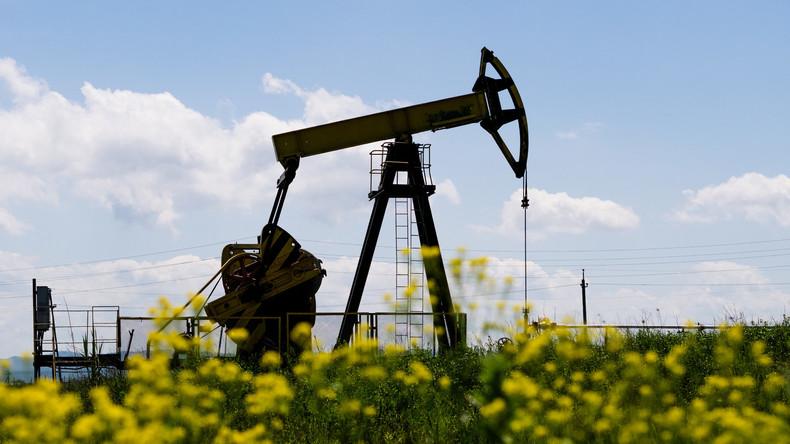 Russland und Saudi-Arabien wollen gemeinsam den Erdölmarkt stabilisieren
