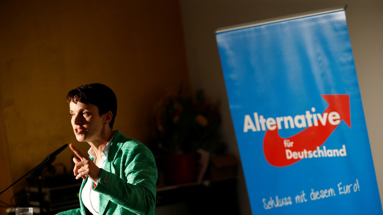 Polarisiert: AfD-Chefin Frauke Petry
