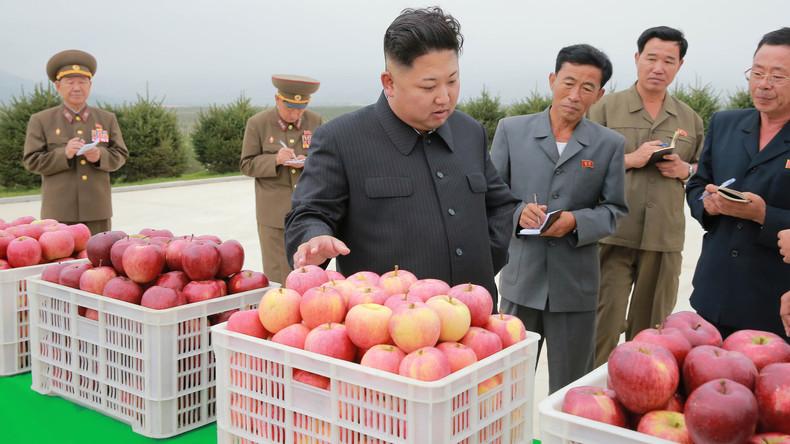 """""""Jangmadang"""": Nordkorea und die kapitalistische Revolution aus dem Untergrund"""