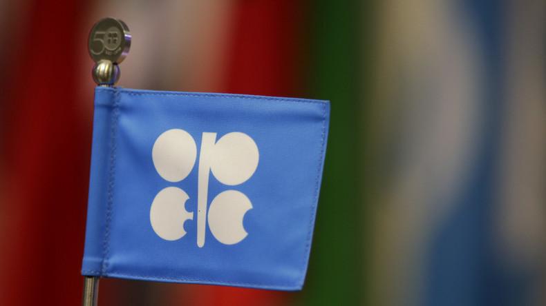 OPEC will Erdölpreise gemeinsam mit Russland stabilisieren
