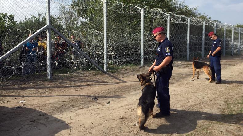 Lettland will einen Zaun an der Grenze zu Weißrussland errichten