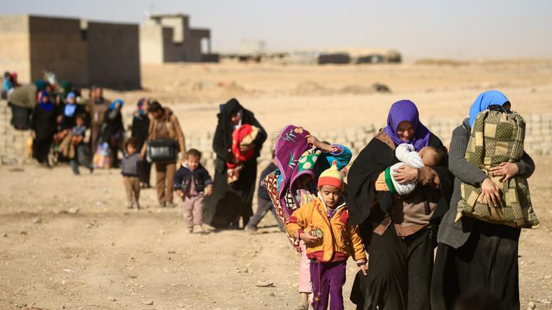 Irakische Armee versagt in Mossul: Kaum Fortschritte im Häuserkampf und 85.000 Vertriebene