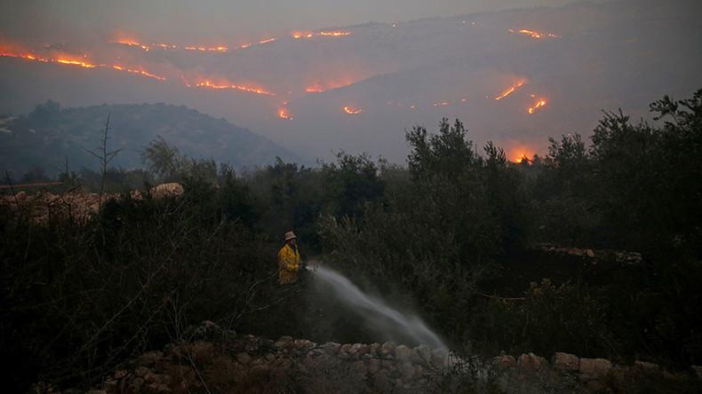 """Israel: Feuersbrunst hat nicht nur Terrorhintergrund, dennoch mehr Siedlungsbau als """"Antwort"""" nötig"""