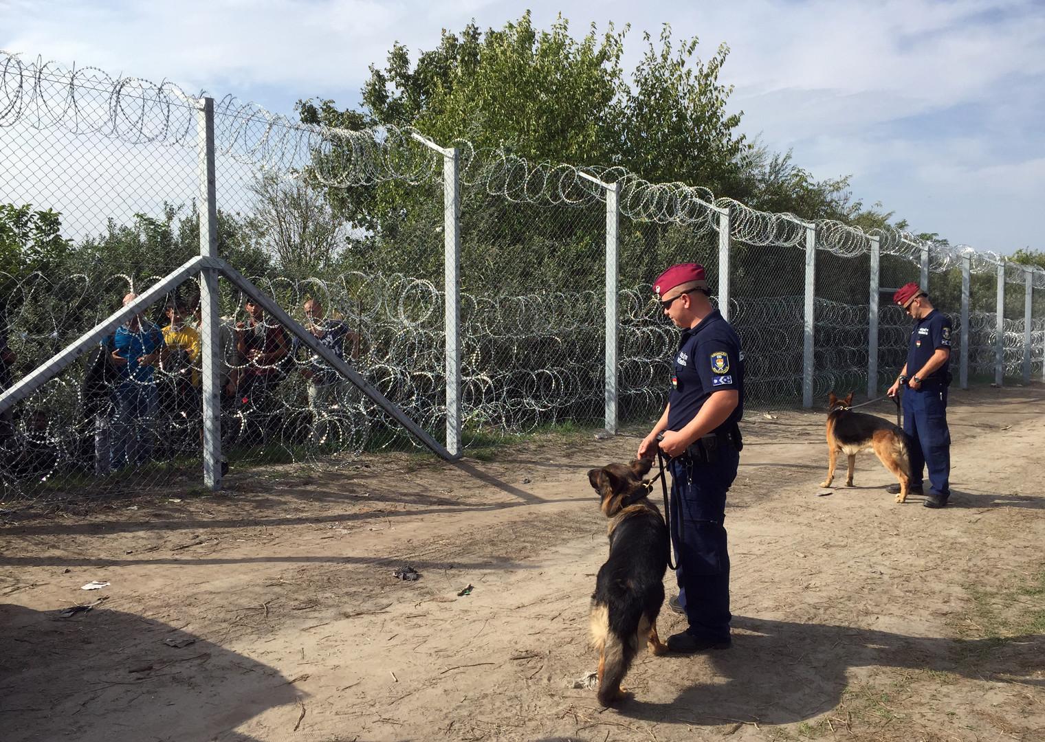 Mitarbeiter der ungarischen Polizei patrouillieren mit Wachhunden entlang einem Zaun an der Grenze zu Serbien