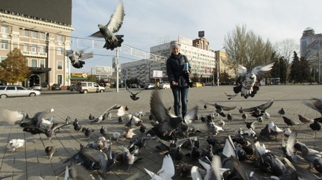 """Ukrainische Zeitung nennt Zugvögel """"Schmarotzer aus dem Aggressor-Land"""""""