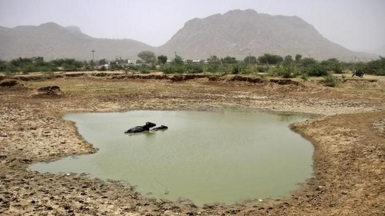 Indien:  Wasser nur für die Reichen - ein Blick in die Zukunft