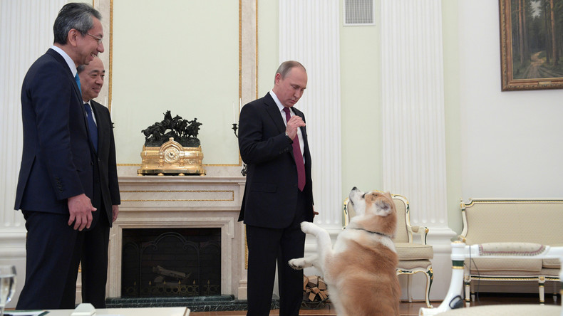 Putins Hund erschreckt japanische Journalisten