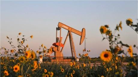 Blumen für die Fracking-Fans. Pumpe der Devon Energy Production Company bei Guthrie, Oklahoma. Archivbild von September 2015.