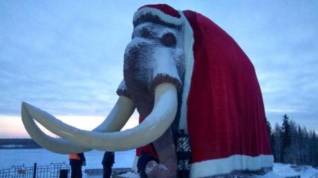 Sibirien: Mammut als Väterchen Frost verkleidet