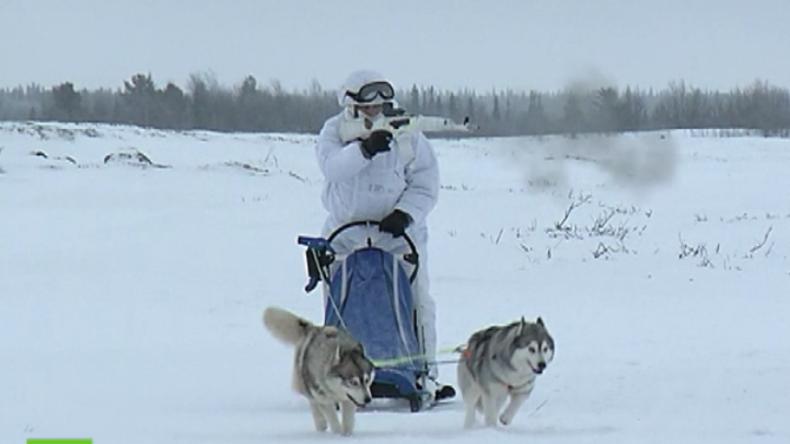 """Russisches """"Arktis-Kommando"""": Militärtraining mit Schlittenhunden und Rentieren"""