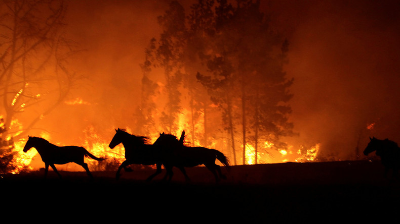 Jahrhundertfeuer wütet in Chile - Bilder aus dem Katastrophengebiet