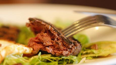 Kommt das Steak der Zukunft aus dem 3D-Drucker?