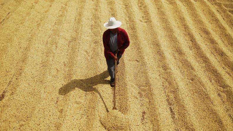 """US-Landreformen in Asien: Mit sozialistischen Methoden gegen die """"rote Bedrohung"""""""